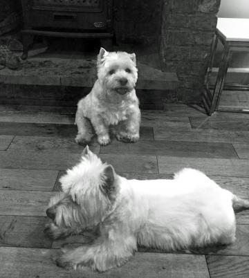 Ella and Robbie