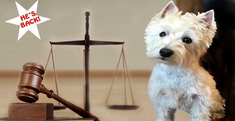 Dog Law Seminar