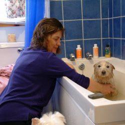 Fostering - bath