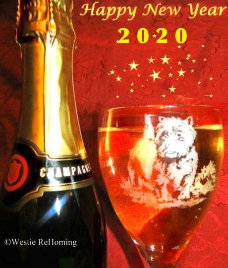 New Year 2020 jpg