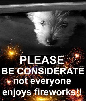 fireworks-copy_edited-1-1
